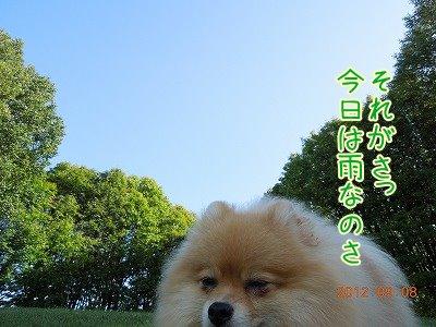 2012090902.jpg