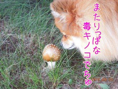 2012092305.jpg