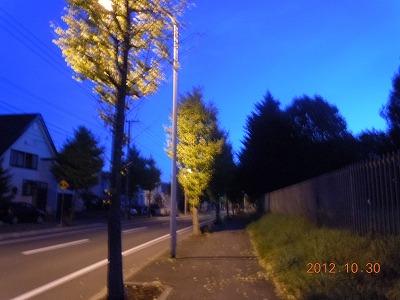 20121031028.jpg