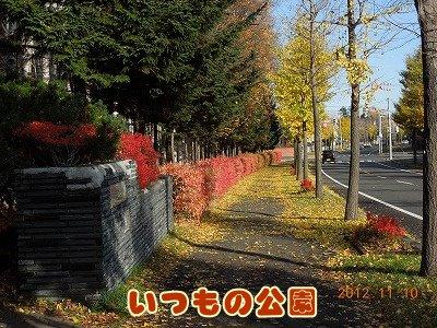 2012111002.jpg