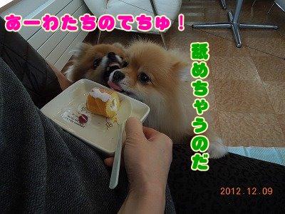2012121017.jpg