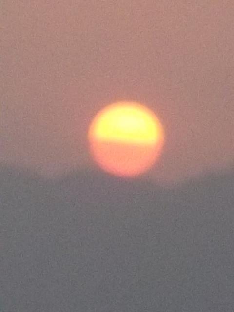 2012,ケララ~バリ島カット番 238