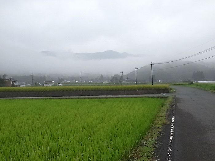 93karukiR0010665.jpg