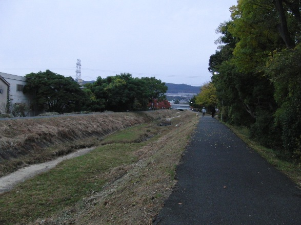 20121111-02.jpg