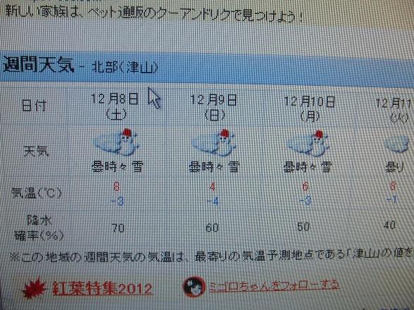 20121206-09.jpg