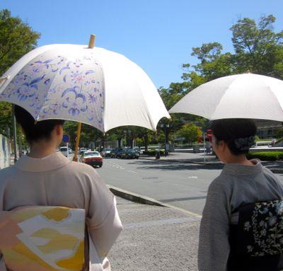 http://blog-imgs-55.fc2.com/k/i/m/kimonokimono/IMG_0026_201309241001299e5.jpg