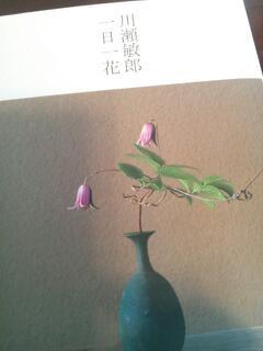20130122_001846.jpg