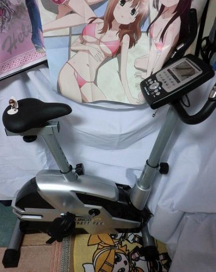 ALINCO(アルインコ) プログラムバイク AFB6010