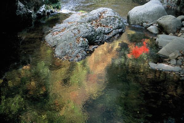 【紅葉】裏匹見峡・紅葉水映