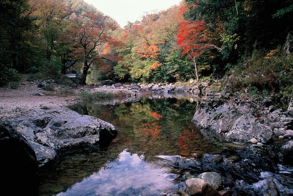 【紅葉】裏匹見峡・10月下旬