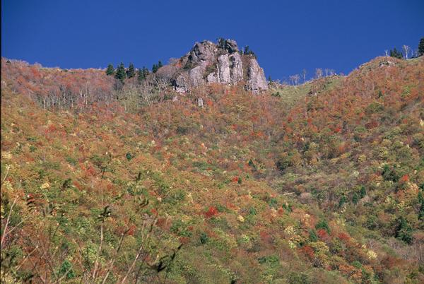 【紅葉】匹見・立岩山の紅葉・11月