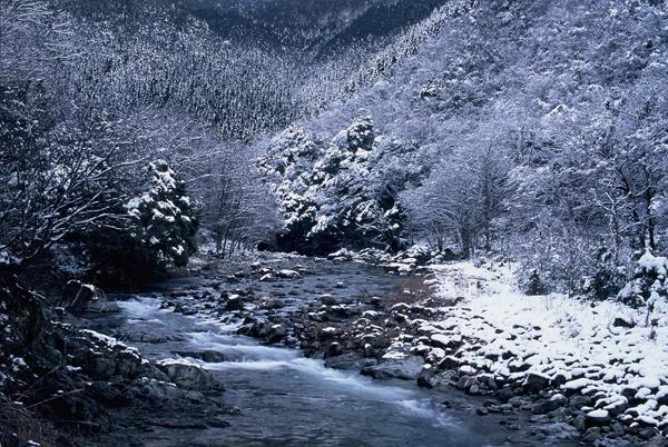 【雪景色】2 匹見峡