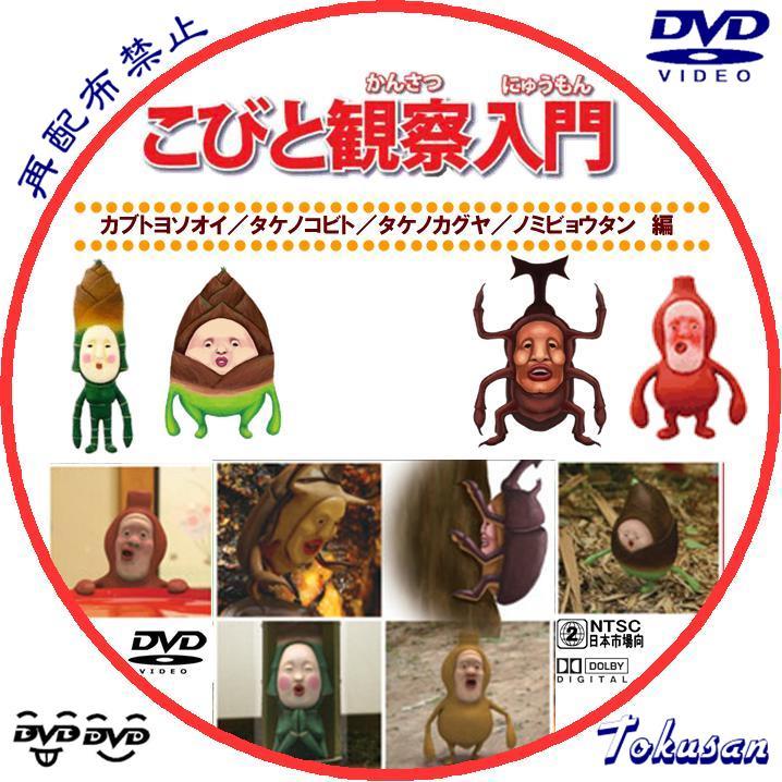 こびと観察入門~カブト・タケノ・ノミビョウタン編