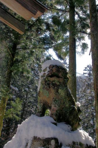佐毘売山神社のわんこ
