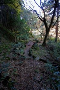 立石の多い龍蔵寺庭園