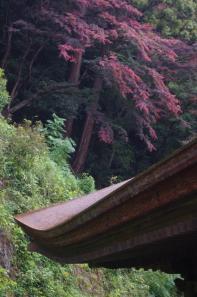 清水寺本堂の屋根