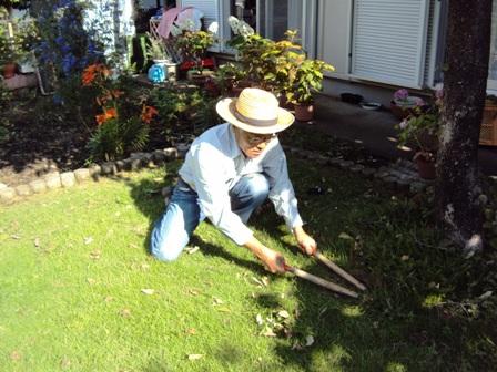 芝を刈っている最中の庭