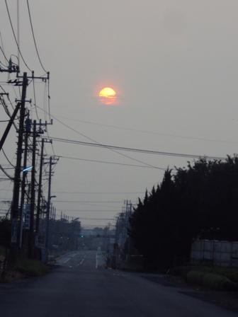 茶畑に燃える早朝の太陽