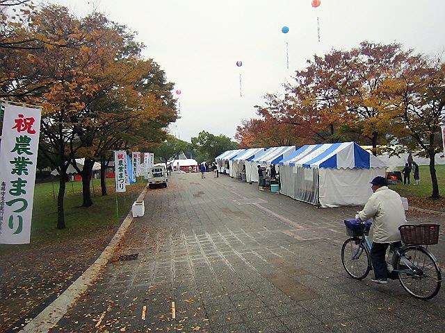 2012.11.23農業まつりのふれあい動物園(*^_^*)