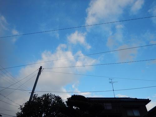 DSCN6809.jpg