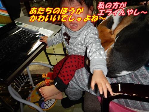 DSCN7306_20141220220716f6e.jpg