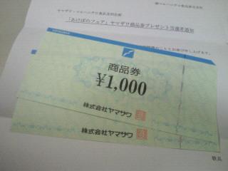 NEC_1058.jpg