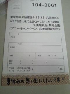 NEC_1166.jpg