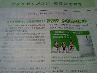 NEC_1181.jpg