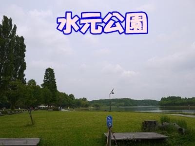 P1050494.jpg