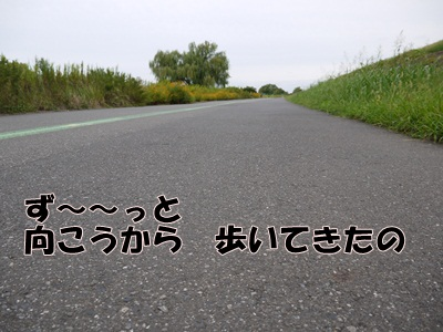 P1060554.jpg