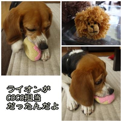 cats_20120816144928.jpg