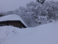 disn_ski_2.jpg