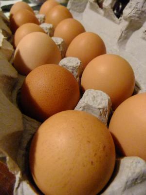 eggs_convert_20120428140810.jpg