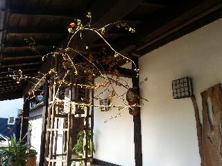 野の花館2