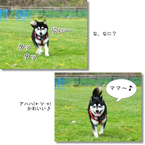 10_20120616025801.jpg