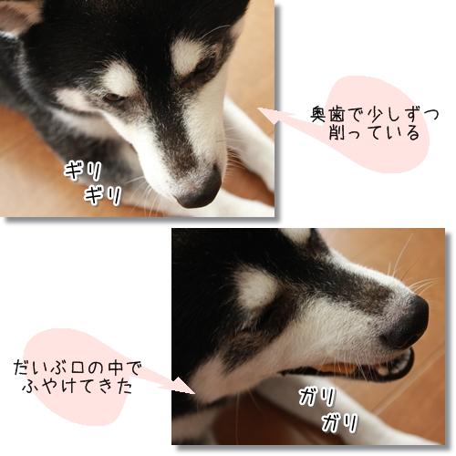 10_20120723174057.jpg