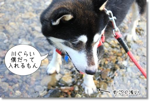 10_20120810144224.jpg