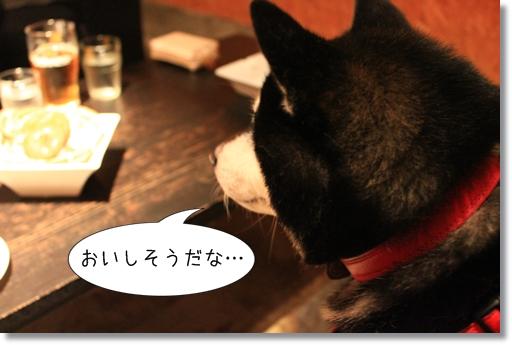 10_20120812165334.jpg