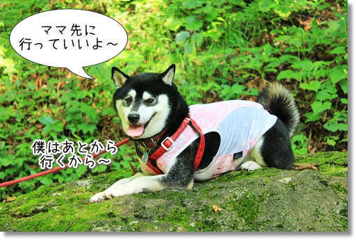 10_20120922020908.jpg