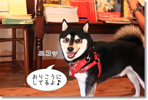 10_20121017174708.jpg