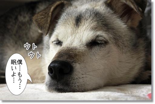 10_20121028025134.jpg