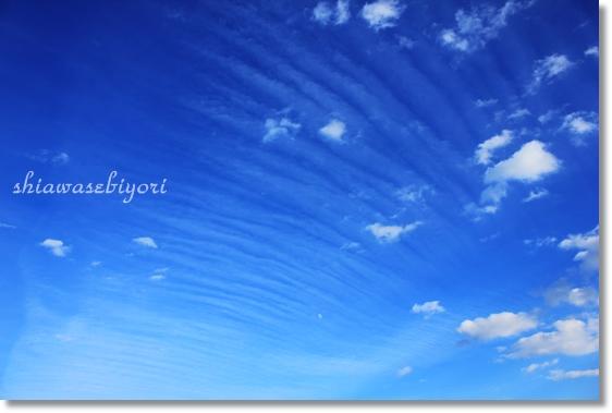 10_20121122155746.jpg