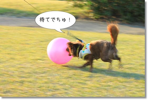 10_20121220033242.jpg