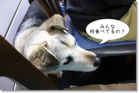 10_20130113101758.jpg