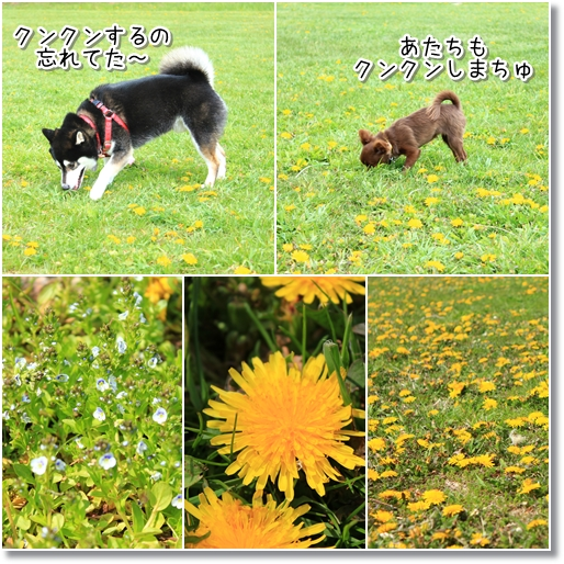 11_20120616025800.jpg