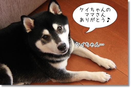 11_20120913101812.jpg