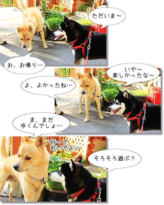 11_20121208005915.jpg