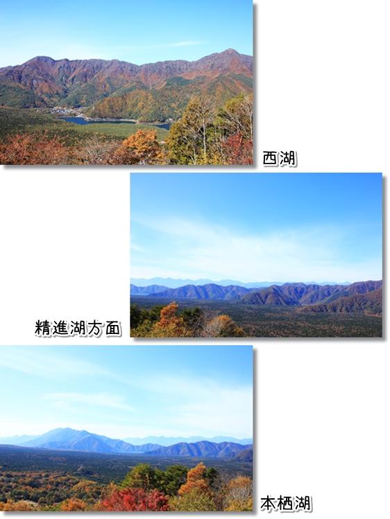11_20130117121650.jpg
