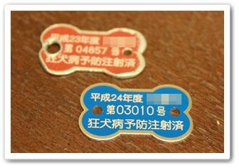 12_20120505220400.jpg