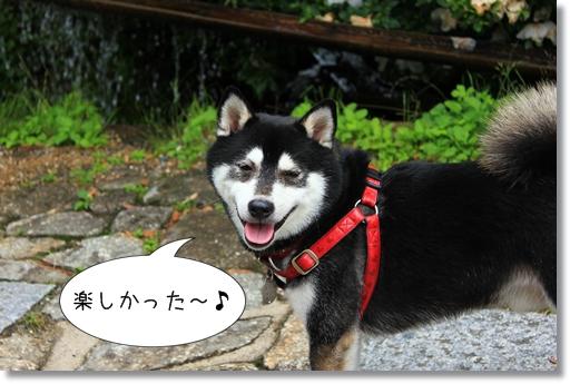 12_20120715210244.jpg